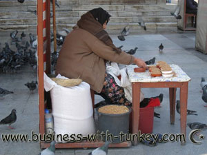 Articles about Turkey